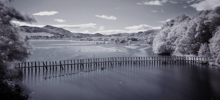 Infrared, Infra, Red, Landscape, Scotland, Golspie