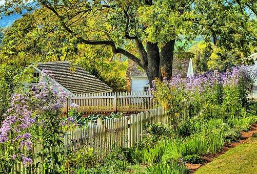 Garden, Flowers, Spring, Grass, Blossom, Floral, Bloom