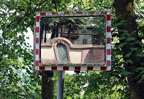 Mirror, Mirror Image, Mirroring, Reflect, Trees