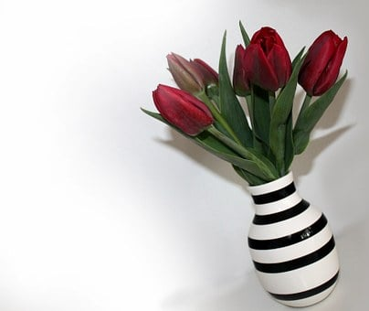 Tulips, Bouquet, Vase, Flowers, Red, Stripes, Spring