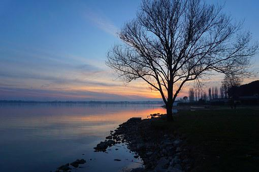 Lake, Water, Trasimeno, Umbria, Tree, Sunset, Sky Water