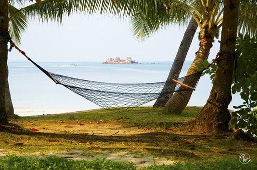 Hammock, Beach, Sea, Vacation, Ocean, Summer, Resort
