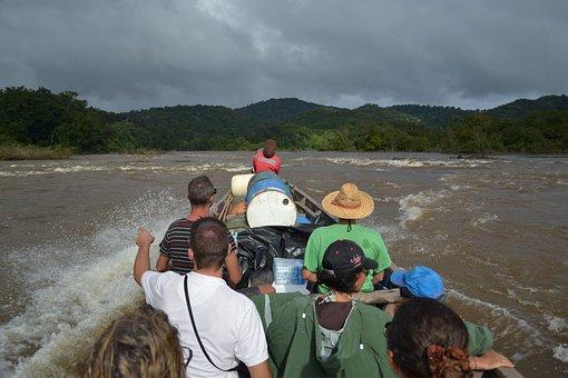 River, Maroni, Guyana, Suriname, Nature
