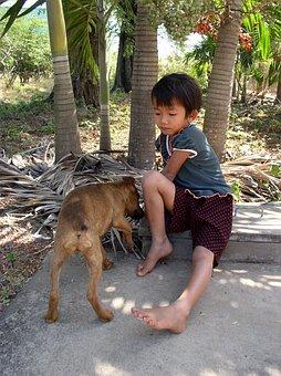 Kid, Dog, Feed, Feeding, Girl, Child, Friend, Accompany