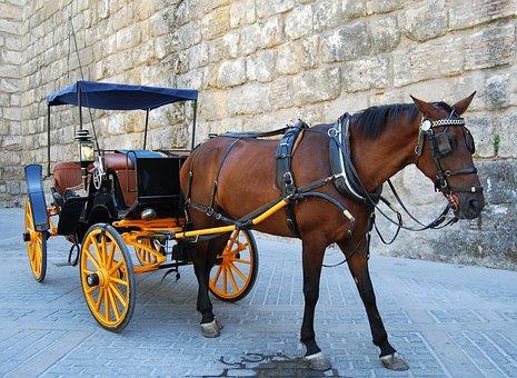 Horse, Wheels, Romantic, Calash, Carrozza