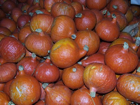 Pumpkin, Hokkaido, Vegetables, Food, Blühendes Baroque