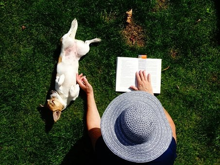 Read, Doggy, Garden, Relax, Dicky, Dog, Animals