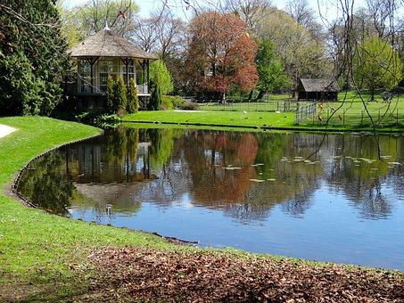 Rams Woerthe, Steenwijk, Pond, Lake, Water, Park
