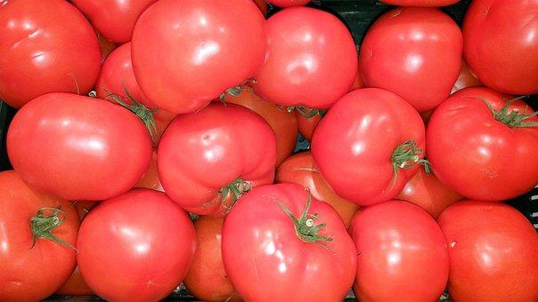 Tomatoes, Fresh, Food, Vegetables, Red, Eat, Healthy