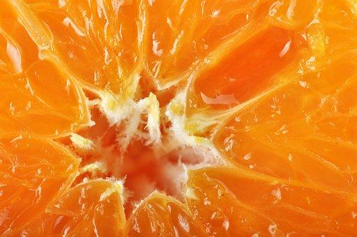 Orange, Orange Fiber, Fiber, Texture Orange