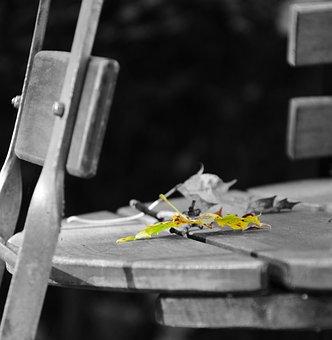Beer Garden, Leaf, Autumn, Maple Leaf, Yellow