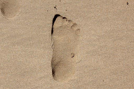 Footprint, Sand, Beach, Sea, Foot, Summer, Walk, Ocean