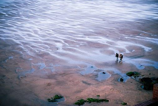Whitby, Beach, People, View From Above, Vista