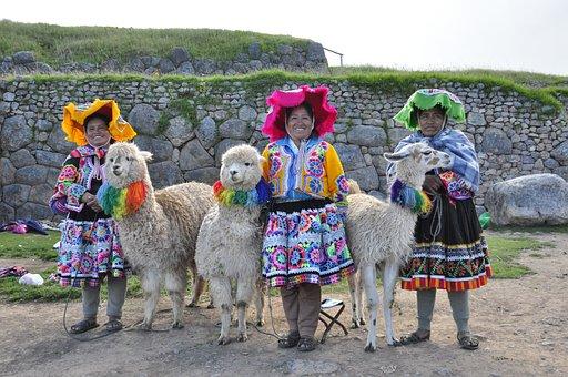 Lama, Alpaca, Mammal, Andean Quechua, Peru, Inca