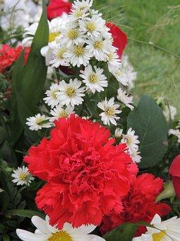 Flora, Floral Arrangement, Arrangement, Flowers