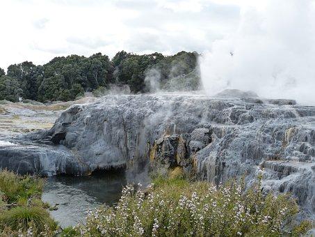 Geyser, Fountain, Hot, New Zealand, Nature, Landscape