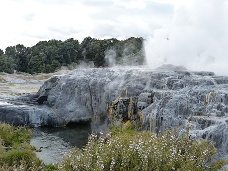 Geyser, Fountain, Hot, New Zealand, Nature, Landscape