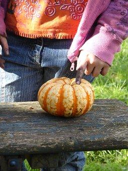 Child, Hands, Dirty, Girl, Pumpkin, Play, Tinker