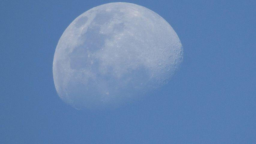 Moon, Linda, Nunes