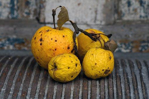 Still Life, Apple, Ripe, Fruit, Dry