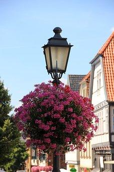 Laterner, Flowers, Geranium, Red, Crop, Balcony Plant