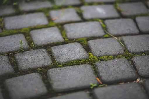Moss, Stone, Sett, Garden, Patio