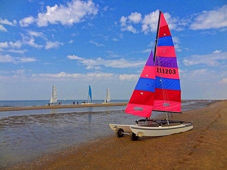 Sailing Catamaran, Catamaran, Sailing, Leisure, Sun