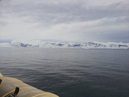 Magellan, Antarctica, Patagonia, Chile