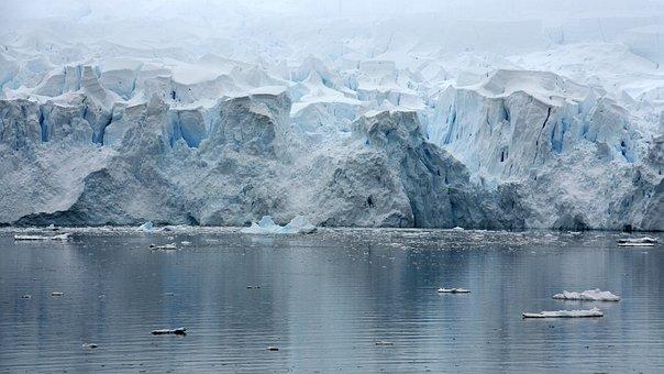 Paradice Bay, Antarctica, Glacier, Iceberg
