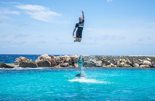 Dolphin, Person, Entertainment, Aquarium, People, Water