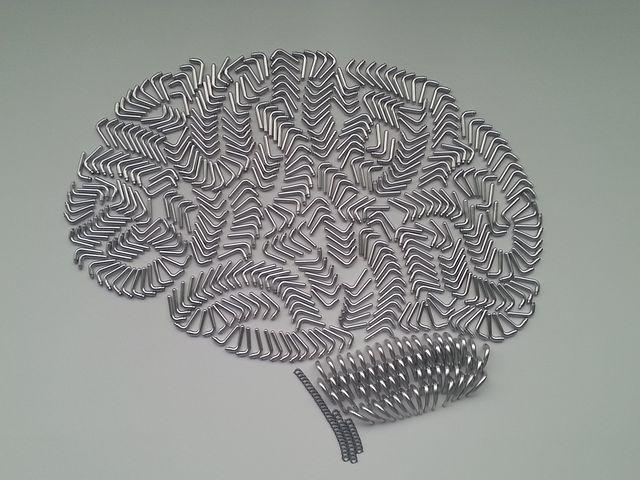 Brain, Brand, Door Handles