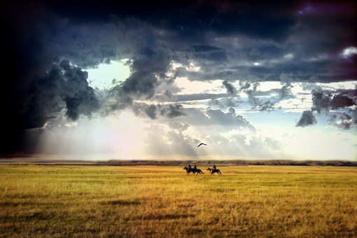 Reiter, Horses, Field, Sky, Clouds, Weather, Wide