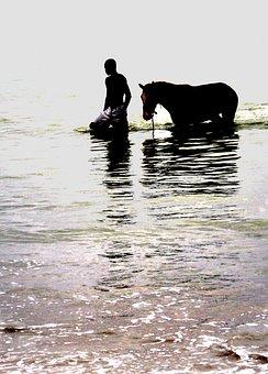 Horse, Relationship, Man, Animal