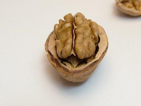 Nut, Walnut, Half Nut, Eat, Brown, Brain, Think