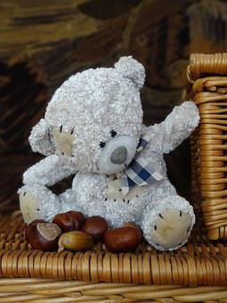 Teddy Bear, The Mascot, Plush Mascot, Fun, Przytulanaka