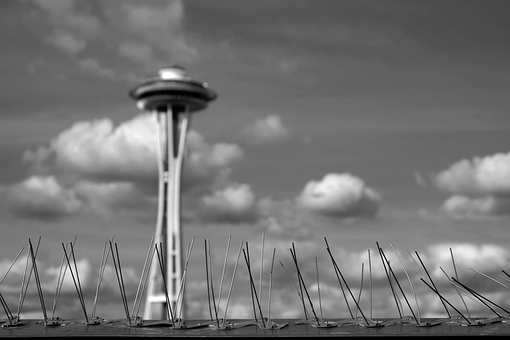 Bird Spikes, Clouds, Seattle, Seattle Space Needle, Sky