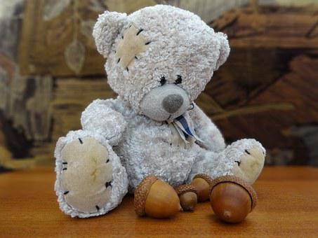 Teddy Bear, The Mascot, Plush Mascot, Fun, Cuddly