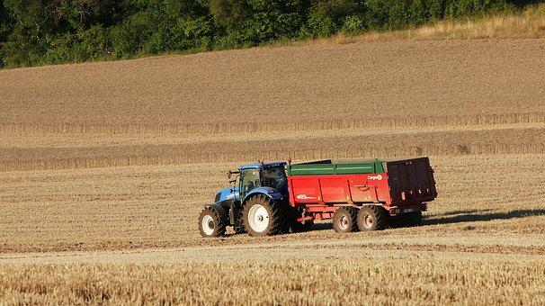 Field, Landscape, Agriculture, Harvest, Grass, Rural