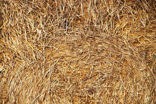 Straw Bales, Round Bales, Stacked, Layered, Cattle Feed