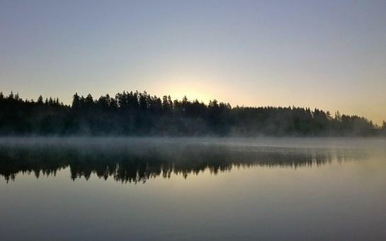 Morning, Water, Lake, Sky, Nature, Mist, Scenic