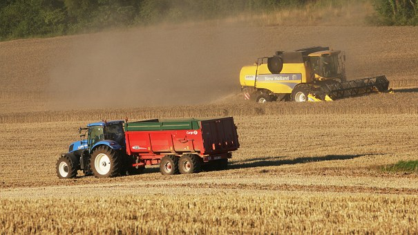 Tractor, Field, Landscape, Sky, Agriculture, Harvest