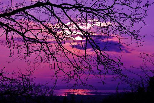 Sunset, Violet, Landscape, Nature, Twilight