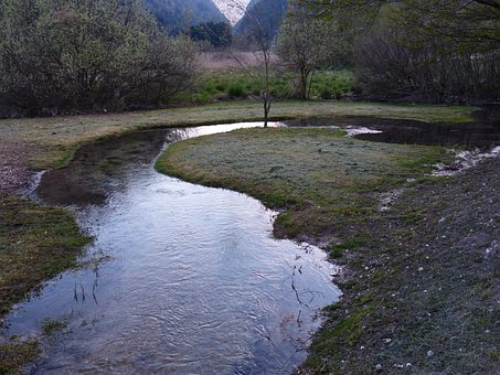 River, Water, Meander, River Loop, Of Course, Biotope