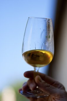 Glasses, Drink, Wine, Stemware