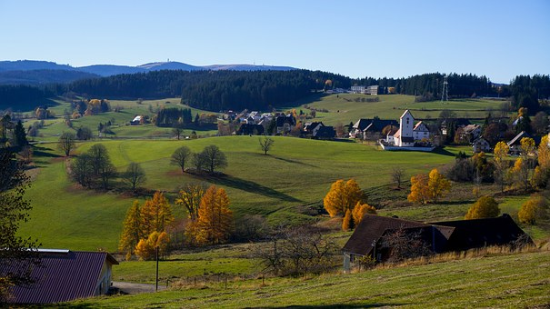Black Forest, Feldberg, View, Box Hill Tower, Firs