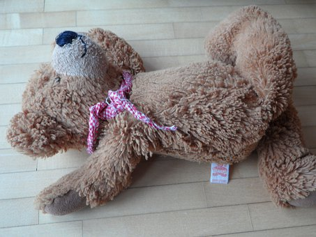 Teddy, Careless, Thrown Away, Leave, Lonely, Sad