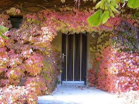 Autumn, Door Frame, Golden Autumn