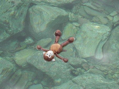 Water, Stuffed Animal, Monkey, Sea, Stones, Soft Toy
