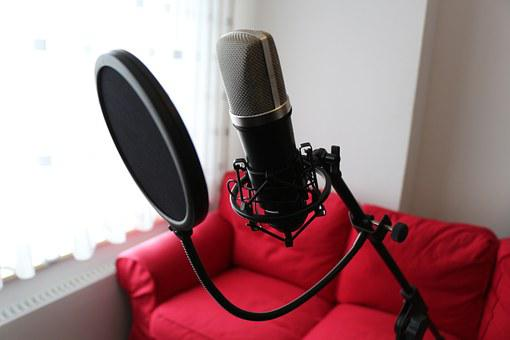 Microphone, Condenser Microphone, Popp Protection