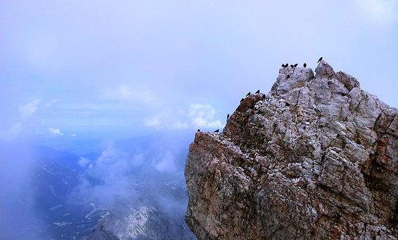 Zugspitze, Rock, Birds, Mountaineering, Hiking, Summit
